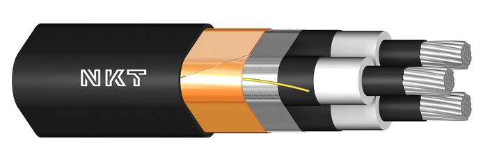 Image of AXCES Cable
